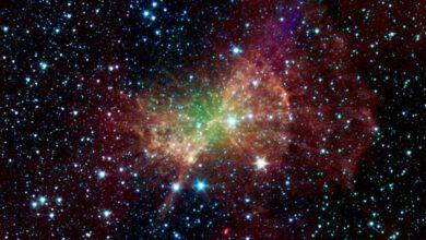 Photo of Sen yürüyen evrensin